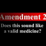 "2016 Amendment 2: ""Does this sound like medicine?"""